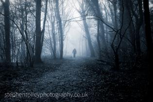 Misty cold morning at Callington Newbridge