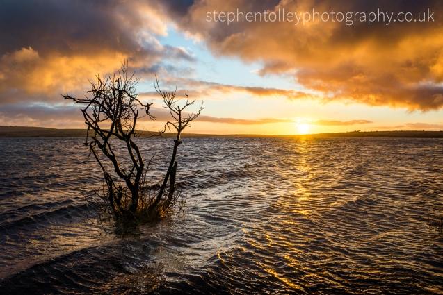 Colliford lake at sunrise