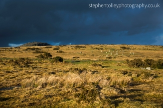 The Hurlers and the Cheesewring in the Golden hour light