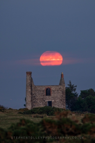 Harvest moon rising at Minions