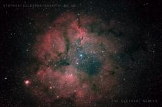 The Elelphant trunk nebula